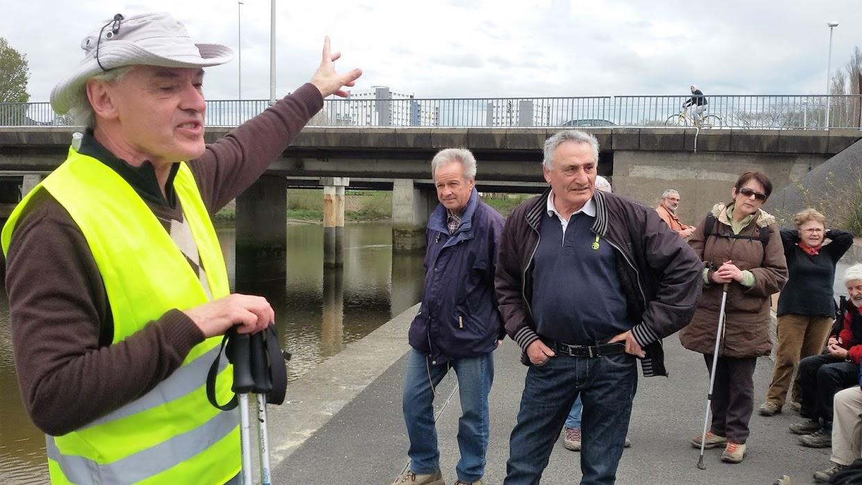 La confluence de la Sèvre et de la Loire